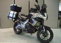 На сафари с Kawasaki Versys