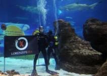 Хорхе Лоренцо в компанията на акули