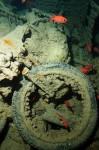 Класически мотоциклети от Втората световна война - изгубени в морето 06
