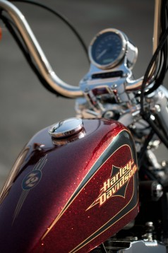 Два нови мотора от Harley-Davidson 07