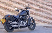 2012 Harely-Davidson Softail Slim 03