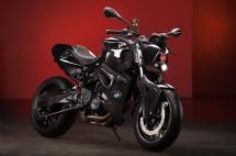 Българският къстъм - Vilner Custom Bike Predator 02