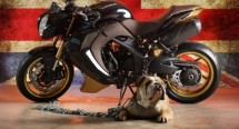 Vilner Custom Bike Bulldog за Speed Triple на Triumph (+видео) 02