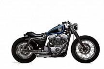 Harley-Davidson Stellalpina по италианските върхове (ВИДЕО) 08
