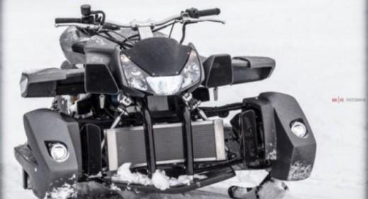 Triazuma Snow - версия снегоход на Wazuma ATV 09