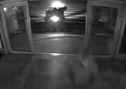 Пишман крадец се опитва да открадне банкомат с ATV (видео)