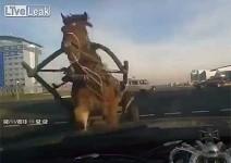 Краш тест с каруца (видео)